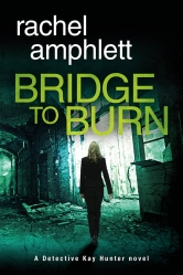 Bridge-to-Burn-Cover-MEDIUM-WEB
